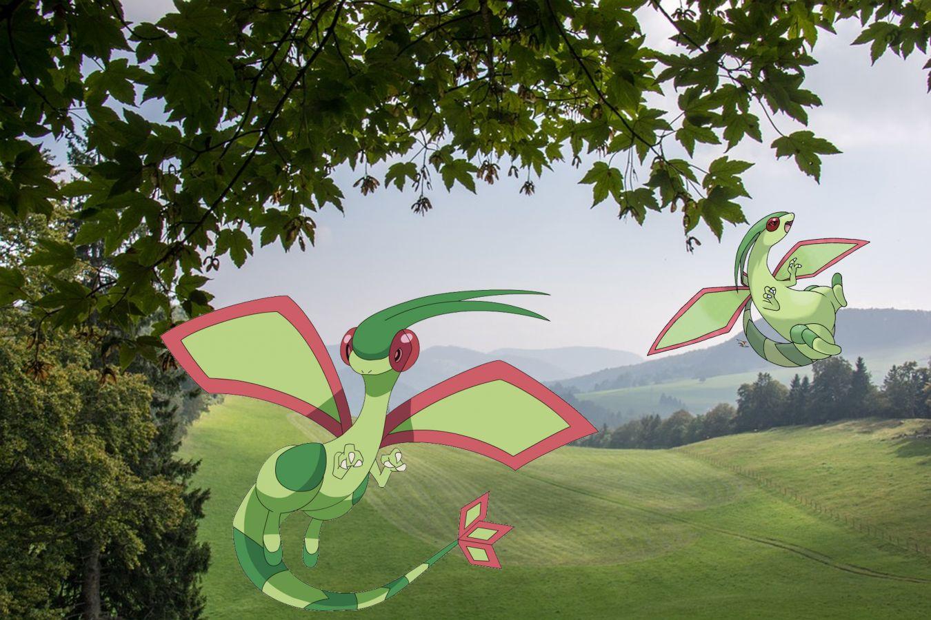 Der beliebte Drache schneidet zwar gegen andere Drachen relativ schlecht ab, dafür ist er gleich doppelt resistent gegen Elektro-Pokémon. (Quelle: Pixabay/Pokéwiki)